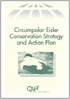 Eider Strategy and Action Plan, click to download