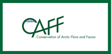 CAFF logo- colour