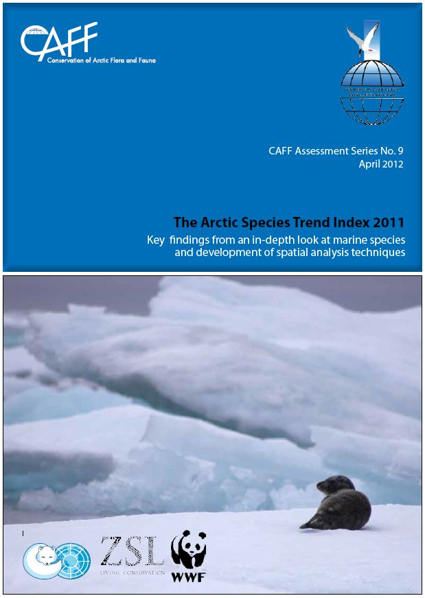 NEW ASTI: Download the Key findings report