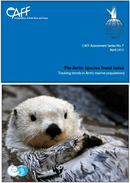 Download the ASTI Marine Report