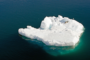 Sea ice habitat in Arctic Ocean / Photo: Willem Tims, shutterstock