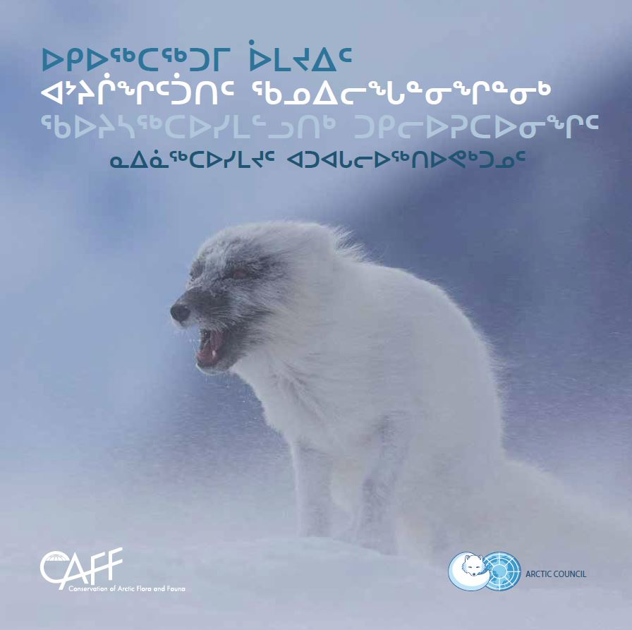 Arctic Biodiversity Assessment Report for Policy Makers (Inuktitut)