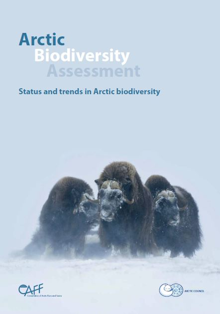 Arctic Biodiversity Assessment. Photo: Carsten Egevang/ARC-PIC.com