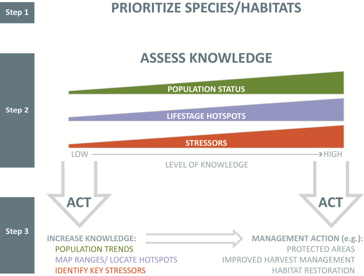 Summary of project steps.  Step 1 will prioritize species and habitats based on conservation risk and benefits to multiple species; Step 2 will assess the status of knowledge; Step 3 will result in direct actions where the state of knowledge is high, and fill important gaps in knowledge where the state of knowledge is poor. Implementation of effective management actions for priority species and habitats is the goal.