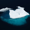 Sea Ice Associated Biodiversity Assessment