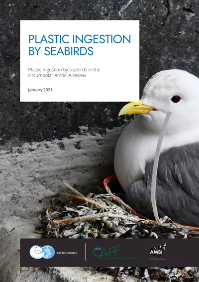 CAFF Seabirds Plastic LiteratureReview 2021 1