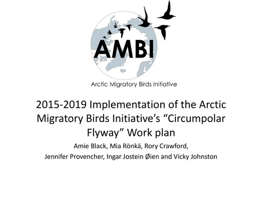 "2015-2019 Implementation of the Arctic Migratory Birds Initiative's ""Circumpolar Flyway"" Work plan"