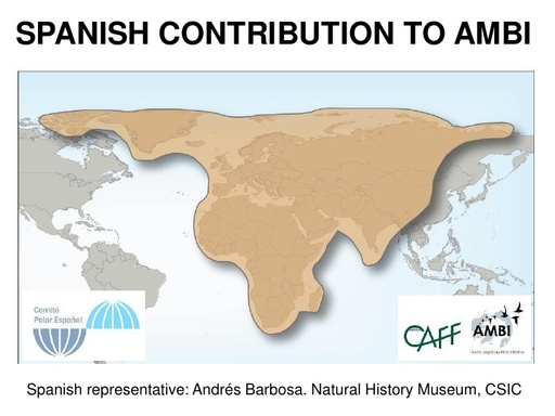 SPANISH CONTRIBUTION TO AMBI