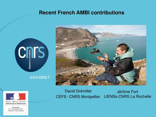 Recent French AMBI contributions