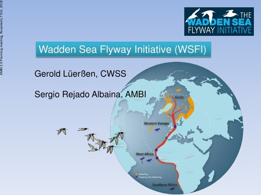 Wadden Sea Flyway Initiative (WSFI)